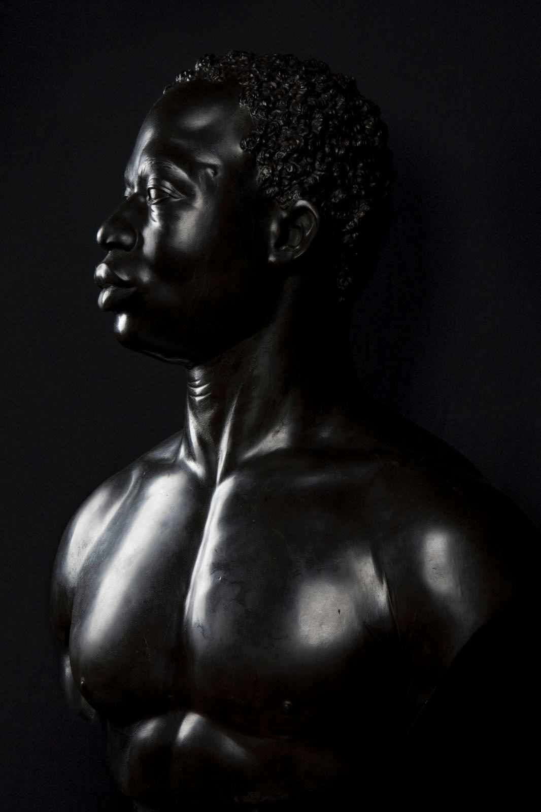 photograph of Francis Harwood, <i>Bust of a Man</i>, the J. Paul Getty Museum, Los Angeles, CA