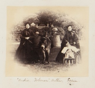Nannies, Donkey and Children, from the Georgina Ferguson Album